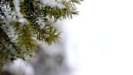 winter background video