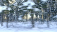 Winter Driving - Driving on a forest road - different takes video