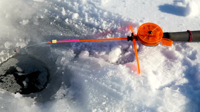 Winter fishing rod and fish on ice video