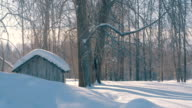 Winter forest in a hoarfrost. Snowfall. Small wooden house. video