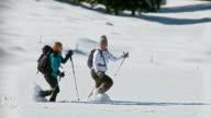 HD: Winter Hiking & Snowshoeing video