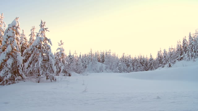 winter in sweden video