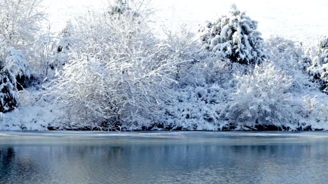 Winter lake video
