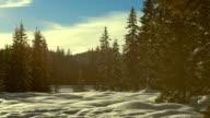Winter Landscape At Sunset video