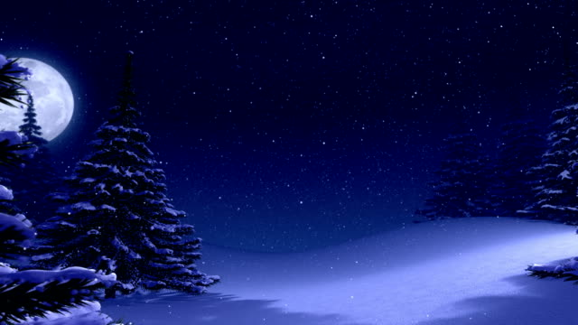 Winter landscape background with pine trees and space for text. video