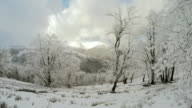 Winter landscape in the mountains, the trees in hoarfrost in hoarfrost video