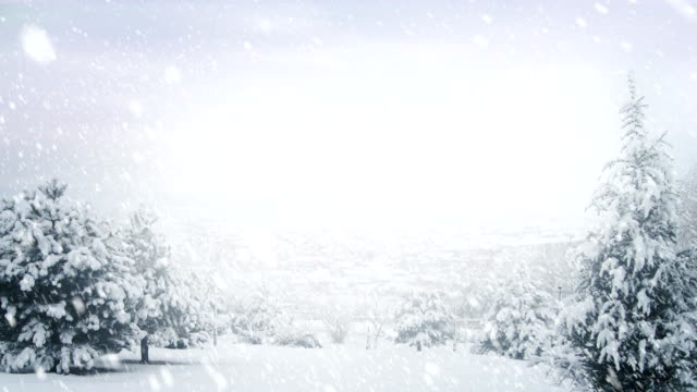 Winter Landscape   Loopable video