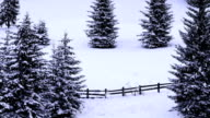 winter landscape (loop) video