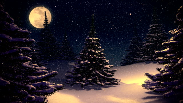 Winter landscape vintage background with pine trees at night. video