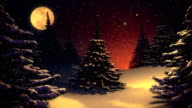 Winter landscape with Christmas tree vintage colors video