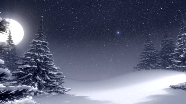 Winter landscape with white Christmas tree and space for text. video
