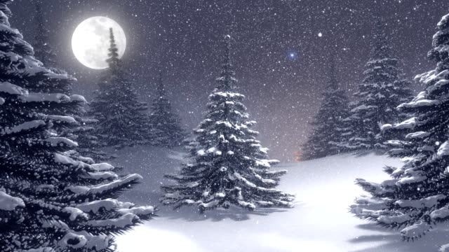Winter landscape with white Christmas tree decorated by polar star. video