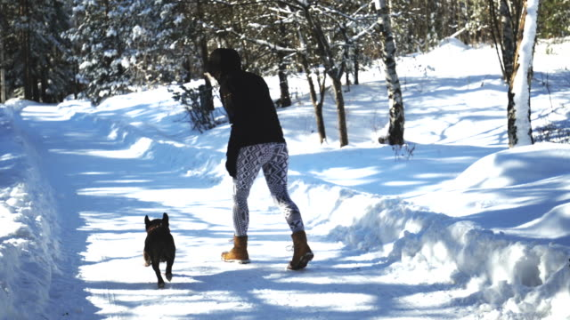 Winter magic between woman and her dog video