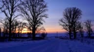 Winter Road, trees, sunset video