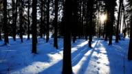 Winter Scenics video
