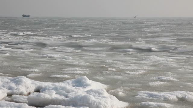 winter sea video