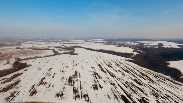 Winter snow field. Winter landscape video