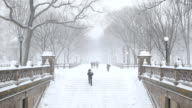 Winter Snow in Central Park New York City video