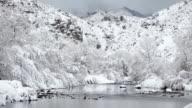 Winter snow South Platte River Wateron Canyon mountains Colorado video