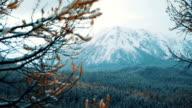 Winter. The Mountain landscape. video
