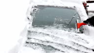 Winter (HD) video