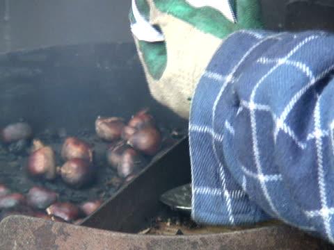 Winter Warmth: Hot Chestnuts video