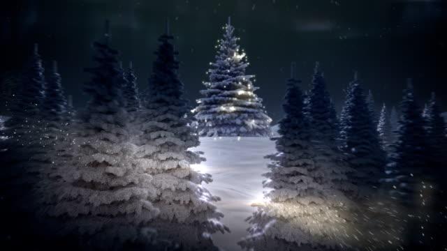 Winter's Tale - Stock Video video
