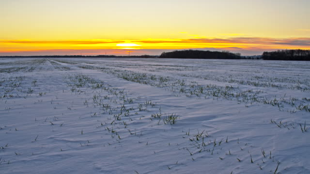 WS DS Wintry Landscape At Sunrise video