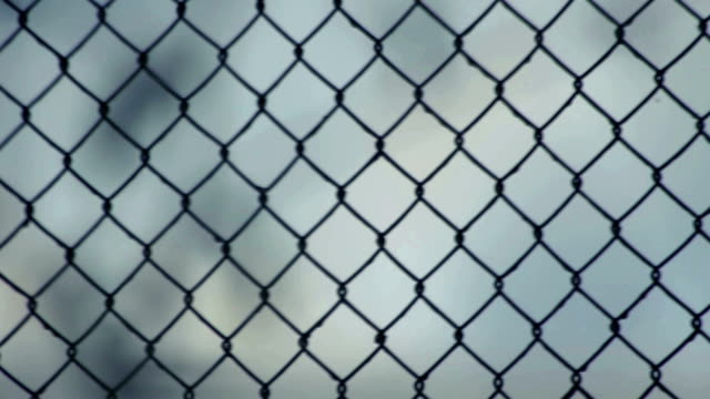 Wire fence video