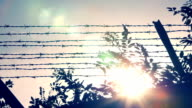 wired fence with sunset in background video