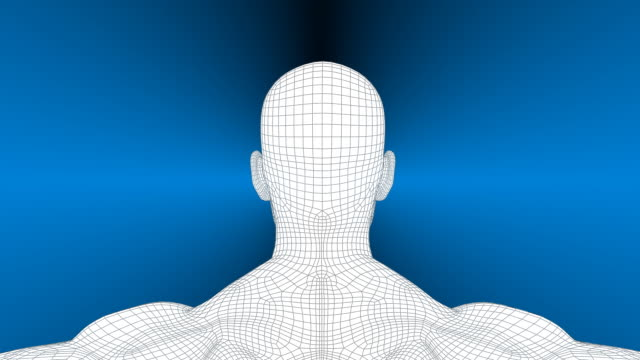3D Wireframe Man Rotation video