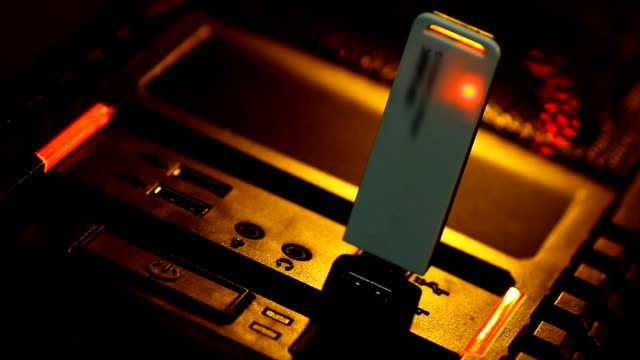 Wireless LAN video