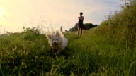SLO MO Woman And Dog Running In The Grass video