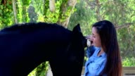 Woman and his horse, equestrian center, France video
