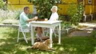 Woman and man playing backgammon and talk. video