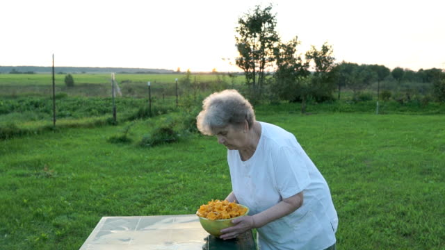 Woman carrying a bowl of mushrooms chanterelles video
