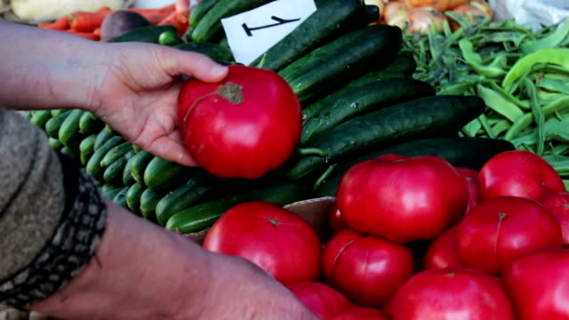 Woman chooses large fresh tomatoes on the market video