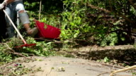 Woman Clearing Overgrown Garden video