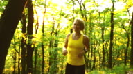 Woman cross country running in summer forest video