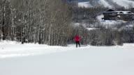 Woman Cross Country Sking In Winter Sport HD video