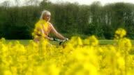 HD: Woman Cycling Along Canola Fields video