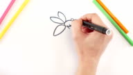 Woman drawing the bee using different felt-tip pen on white paper, time lapse video