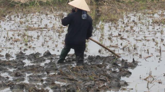 woman farmer working in the field video