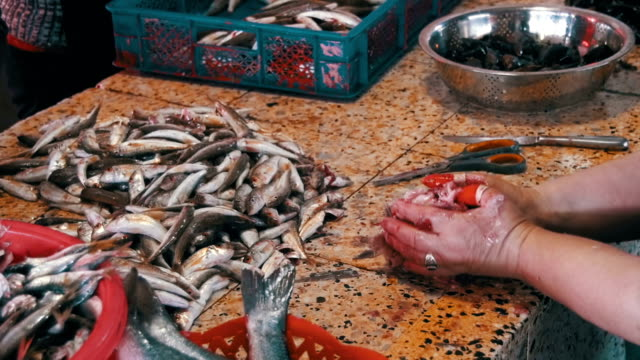 Woman Fish Seller Cleans and Cutting Fresh Fish in Fish Market video