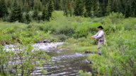Woman Fly-Fishing video