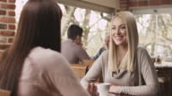 Woman friends sitting in a cafe and talking video