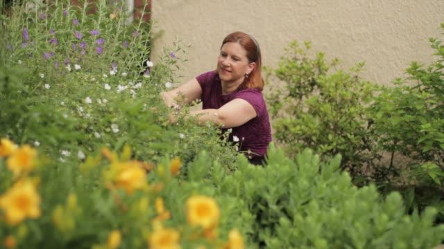 Woman gardening in front yard video