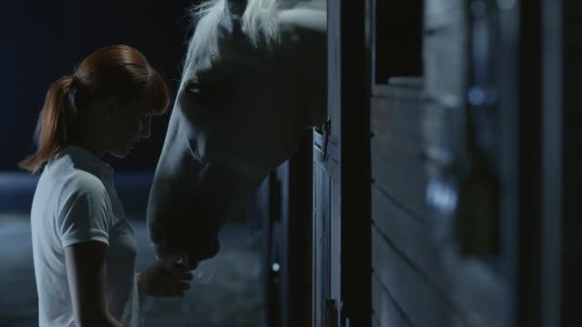 SLO MO Woman giving a horse in the stable treats at night video