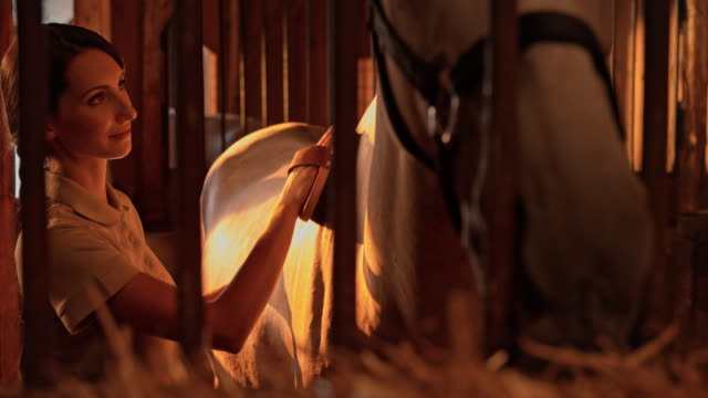 SLO MO DS Woman grooming her horse in his stable box at sunrise video