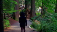 Woman Hiking in Forest Nature Path, Early Morning Walk in Rain video
